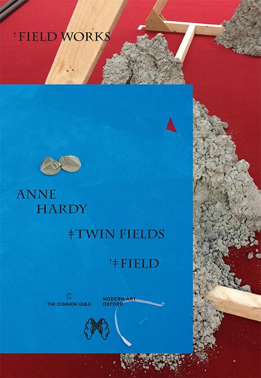 Anne Hardy FIELD TWIN FIELDS FIELDWORKS